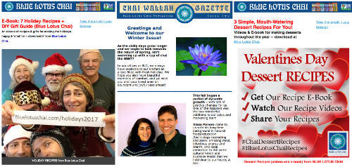 Check out our back issues of our e-newsletters: recipes, tips, tricks, and news about Blue Lotus Chai.