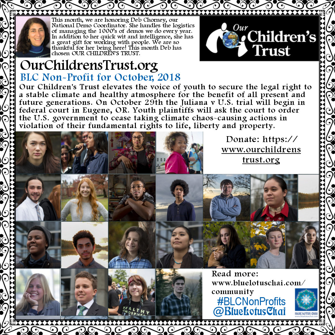 Non-Profit of The Month - October - OurChildrensTrust.org