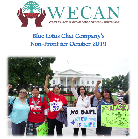Non-Profit of The Month - OCT - WECAN