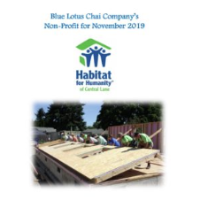 Non-Profit of The Month - NOV - Habitat For Humanity