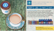This is Blue Lotus Chai's electronic press kit. It includes a product overview, owner bios, awards, press, sustainability statement and story angles.
